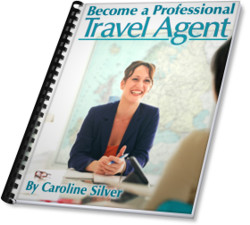 travel consultant jobs